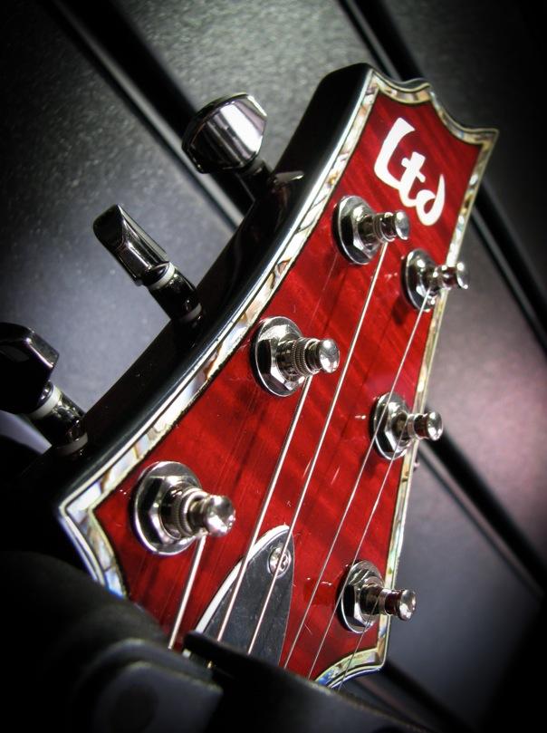 ESP Guitar 4